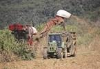 Milestones to overcome sugar industry millstones