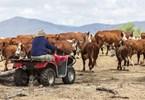 Farmers win in budget