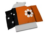 NT flag and map