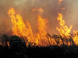 Fire and Emergency urges burn-off planning