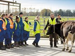 GoDairy provides opportunities for career changers