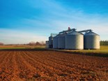A national stored grain hotline has been established by the GRDC