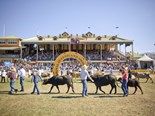 Queenslanders are encouraged to get behind the state's farmers at this year's Ekka