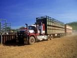 More local government support for the NSW Livestock Loading Scheme is needed