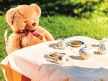 Tambo's teddy bears picnic is on in October
