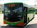Go Bus Dunedin