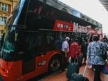 NZ bus network