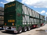 An older model Byrne trailer at work for Frasers Livestock Transport.