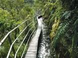 Walks in Takaka and Marahau