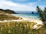 An Otago Peninsula road trip