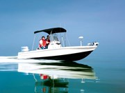 Robalo Boats Cayman 206