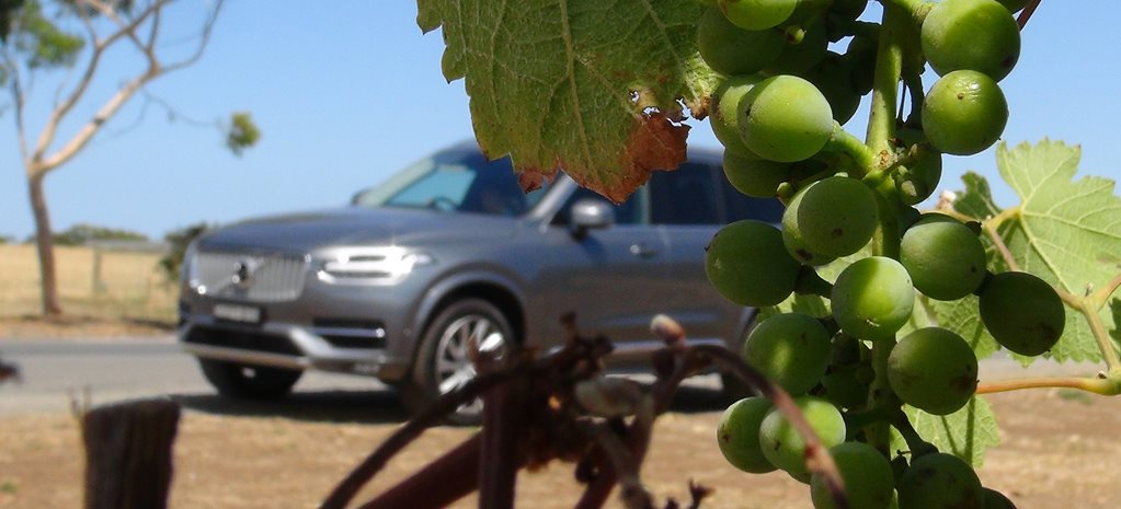 Volvo XC90 at vineyard