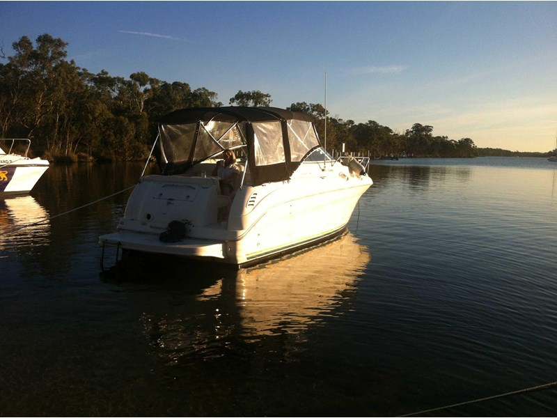 sea ray 260 sundancer 359779 014