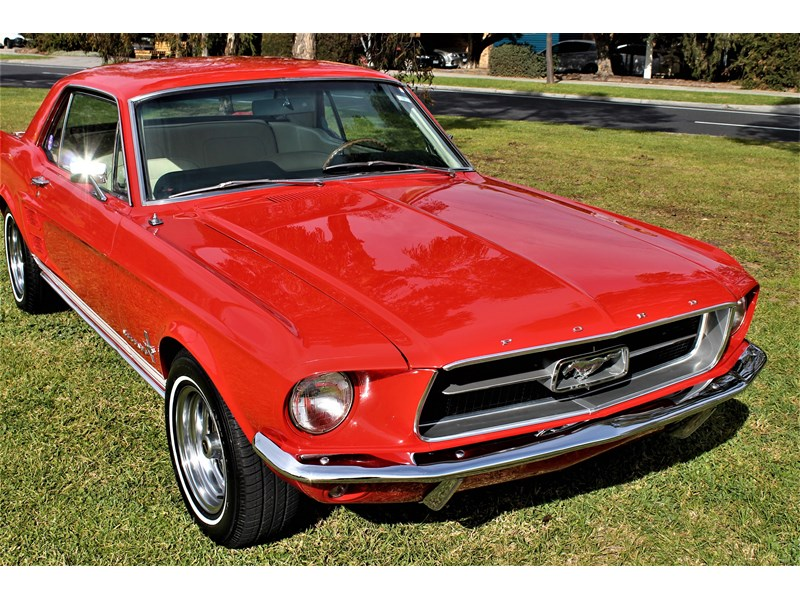 ford mustang 515791 019