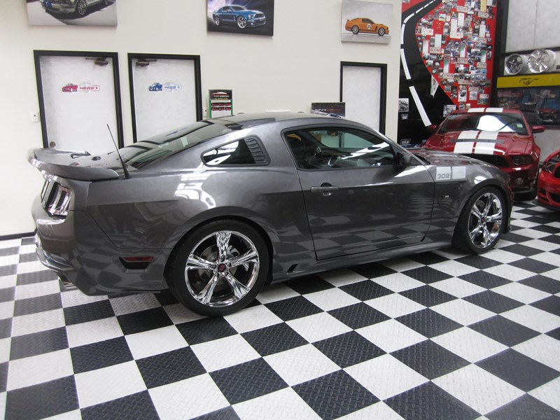 ford mustang 495913 005