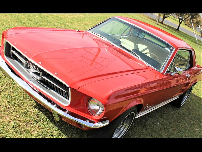 ford mustang 515791 043