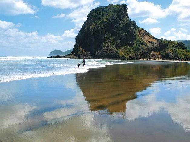 Wonderful Getting Around New Zealand