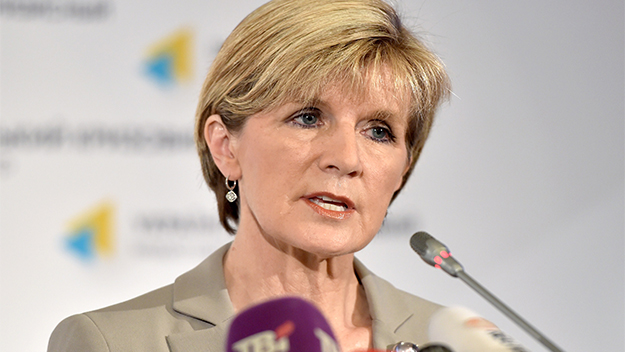 Julie Bishop undeterred by setbacks to MH17 site