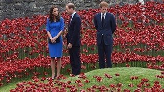 Prince William, Kate Middleton, and Prince Harry red poppy display