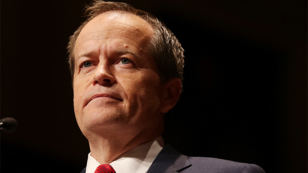 Shorten reveals he was investigated for sexual assault