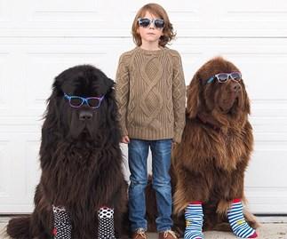 Little boy, big dogs, tiny horse: A beautiful friendship