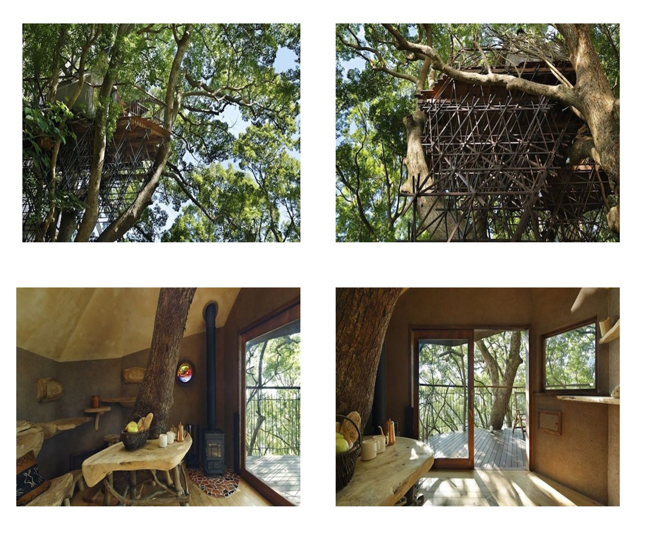 Is this the world's best tree house?