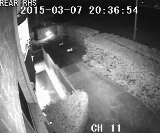 New CCTV footage released in hope of finding Sydney mother's killer