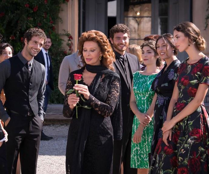 Sophia Loren stars in beauty campaign at 81
