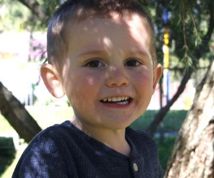 Police investigate message on tree near where William Tyrrell went missing