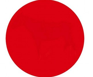 Can you see what's inside this red circle?