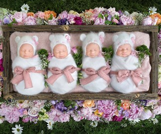 Identical quadruplets snooze through gorgeous shoot