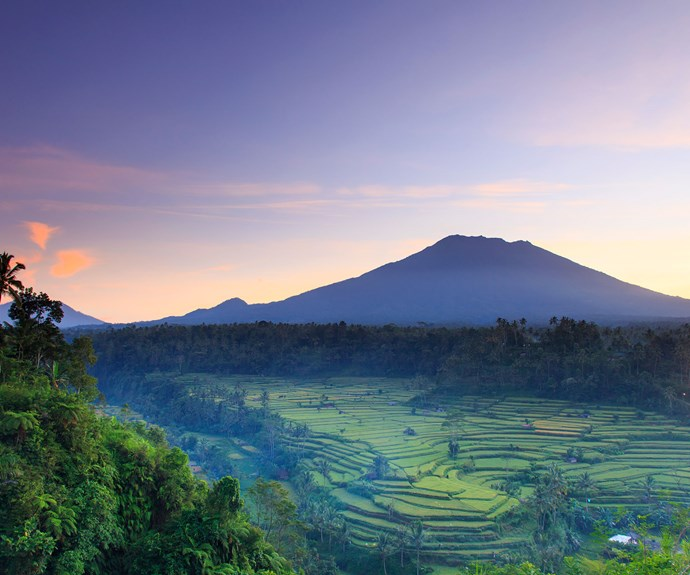 Bali has changed and here's what you need to know