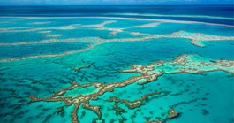 Australia has been warned the Great Barrier Reef's heritage status could be in danger. (Credit: Getty)