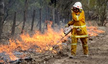 An RFS volunteer back burns to combat fire in the Warrumbungle region. (Photo: AAP)