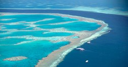 The Great Barrier Reef is being considered for the World Heritage site in danger list. (Photo: Getty Images)