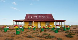 Fifteen flower clumps crop up in Broken Hill to celebrate 50 years of the LEGO in Australia. (Credit: LEGO Australia and NZ)