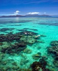Australia has announced the world's largest marine reserve. (Credit: Getty Images)
