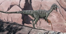 An artists' impression of the Aussie ceratosaur. (Credit: Brian Choo/Museum Victoria)