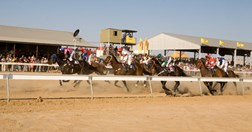 Horses race past the large sheds sheltering punters from the outback sun at the Birdsville racecourse. (Credit: Karen Brook)
