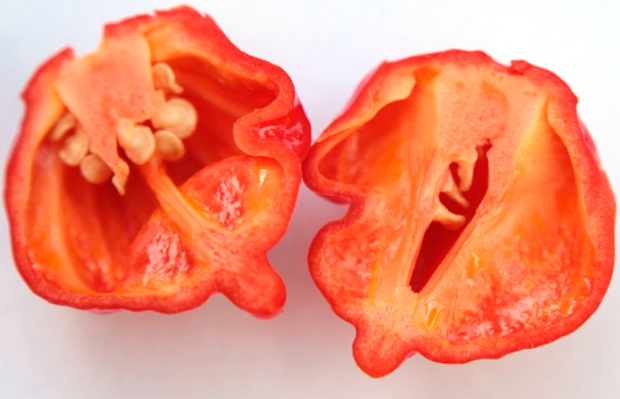 Why chillies are hot? The science behind the heat ...