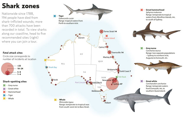 Fatal Sharks In Australia