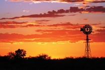 Sunset at Longreach. (Credit: Steve Wilson)