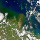 A NASA satellite shows a muddy plume heading for the GBR from the Burdekin River on 4 Jan (Photo: NASA/Norman Kuring).
