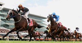 Corey Brown riding Shocking wins the Melbourne Cup in 2009 (Photo: Quinn Rooney/Getty Images).