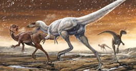 An scientific illustraion of the Australian <i>Tyrannosaurus</i>. (Image by Lida Xing)