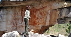 Rock art of a large bird, possibly the oldest in the world. (Photo: Robert Gunn; Jawoyn Association)