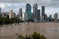The swollen Brisbane River from Kangaroo Point, Wednesday afternoon, at a peak of about 4.4 m. (Photo: Carolyn Barry)