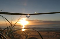 Sunrise through a dew drop on North Beach in Perth, Western Australia. (Credit: Lesley King)