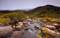 A tarn shelf in Mount Field National Park. (Credit: Tourism Tasmania/Michael Walters photography)