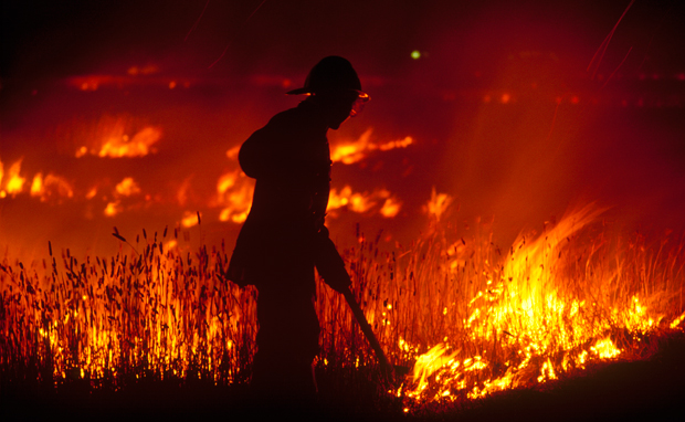 the worst bush fires in australia u0026 39 s history